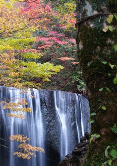 Onogawafudo Fall, Fukushima, Japan Islands In The Pacific, Go To Japan, Tourist Spots, Beautiful Waterfalls, Beautiful Places In The World, Japan Travel, Amazing Nature, Places To See, Travel Inspiration
