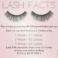 Eyelashes naturally shed every single day! Keep up with your Eyelash Extension fill-ins to keep your eyelashes looking their best. Fake Eyelashes, False Lashes, Long Lashes, Artificial Eyelashes, Eyelashes Makeup, Longer Eyelashes, Lash Lounge, Lash Quotes, Tips