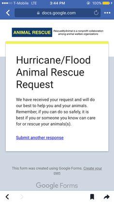 Hurricane Party, You Can Do, Organization, Getting Organized, Organisation, Tejidos