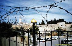 Le non-recensioni di Gcm: Un giorno vissuto a Gaza