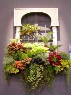 Finestre e balconi fioriti