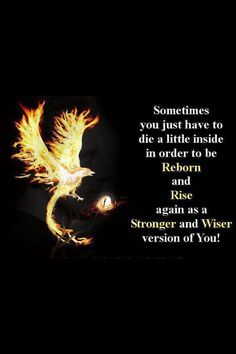 Discover and share Phoenix Rebirth Quotes. Explore our collection of motivational and famous quotes by authors you know and love. Great Quotes, Quotes To Live By, Me Quotes, Motivational Quotes, Inspirational Quotes, Super Quotes, Rebirth Quotes, Phoenix Quotes, Bird Quotes