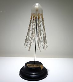 Model of 'Cladonema radiatum' (a sea jelly) by Leopold and Rudolf Blaschka (photo by the author for Hyperallergic)