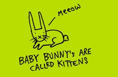Learn Something Every Day With These Funny Doodles Of Surprising Facts - DesignTAXI.com