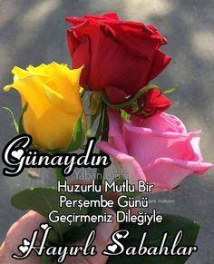Good Morning, Flowers, Plants, Allah, Dolls, Sayings, Patterns, Buen Dia, Baby Dolls