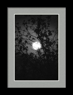 Moon Framed Print featuring the photograph Hiding by Marnie Patchett
