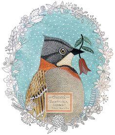 birdie y mil otros pajaros