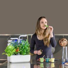Smart Garden, Home And Garden, Vegetables For Babies, Aromatic Herbs, Edible Flowers, Indoor Garden