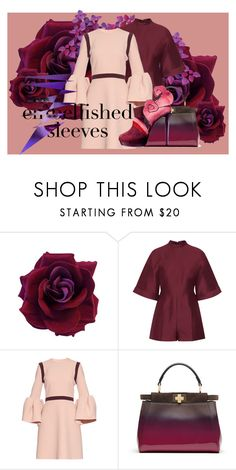 """Embellishes Sleeves"" by s-a-m-hoogland ❤ liked on Polyvore featuring Valentino, Roksanda, Fendi, be, bold, sparling and embellishessleeves"
