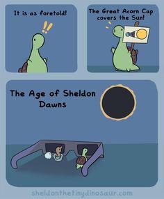 Sheldon the Tiny Dinosaur who thinks he's a turtle