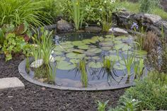 15 Awe Inspiring Garden Ponds That You Can Make By Yourself #Ponds