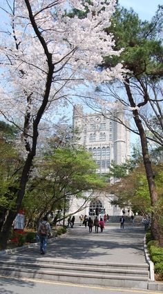 Does Travel Insurance Cover Airbnb Yonsei University, Kyung Hee, South Korea Travel, City Wallpaper, Seoul Korea, Japan Travel, Beautiful Places, Scenery, Around The Worlds
