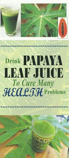Get Rid of lots of Health Problems Try this Papaya Leaves Drink, can do wonders. - Read & Repin Follow Us