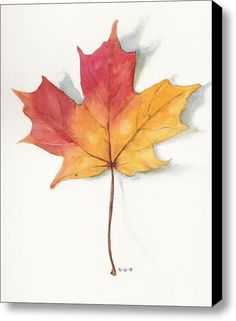 Maple Leaf Ii Stretched Canvas Print / Canvas Art By Betsy Gray Bell
