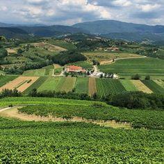 Collio wine country: Italy's undiscovered region