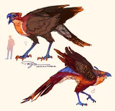 Playing around with phoenix designs for Liam's unglamoured looks, and I think I like them leggy and secretary bird-ish. Colorful raptors, larger ladies… hm hmm…
