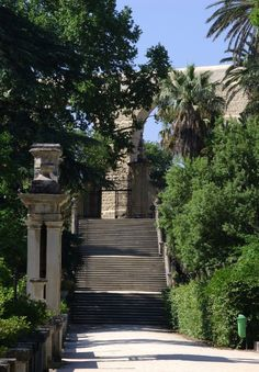 Jardim Botânico da Universidade de Coimbra.