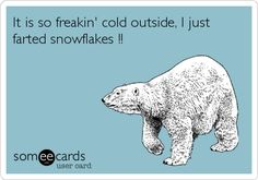 Search results for 'bears' Ecards from Free and Funny cards and hilarious Posts Just For Laughs, Just For You, E Cards, Someecards, Laugh Out Loud, The Funny, Make Me Smile, I Laughed, Laughter