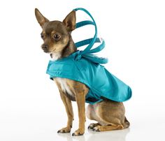 "KEEP YOUR DOG SAFE AND DRY AVOIDING 'WET DOG' ODOR WHILE STAYING FASHIONABLE ""There's no such thing as bad weather, only bad clothes."" (Norwegian saying) Don't keep your doggie cooped up during rainy"