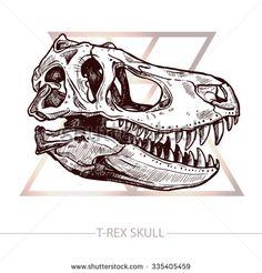 Dinosaur Skull. Drawing Of T-Rex Skull