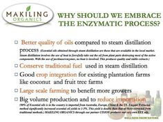 Let's support the enzyme extraction method for essential oil production.