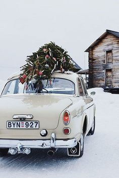 nothing like loading up a vintage car with the christmas tree