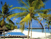 Sensimar Maafushivaru, Ari-Atoll, Malediven günstig buchen » Angebote Sensimar Maafushivaru – TUI.com