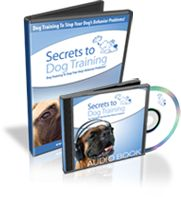 Secrets to Dog Training | Dog Obedience Training to Solve Dog Behavior Problems
