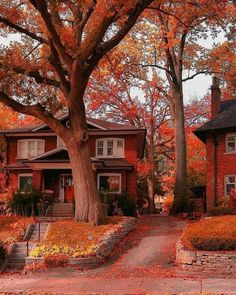 Fall Pictures, Best Funny Pictures, Fall Pics, Landscaping Images, Autumn Aesthetic, City Aesthetic, Autumn Cozy, Cozy Place, Belle Photo