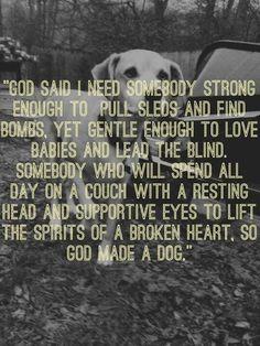 Dog is God spelled backwards, just sayin'