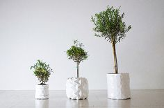 An Origami Pot That Expands As The Plant Grows | HUH.