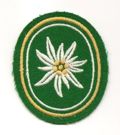 BUNDESWEHR  GERMAN ARMY DRESS UNIFROM PATCH #3 MOUNTAIN TROOPS