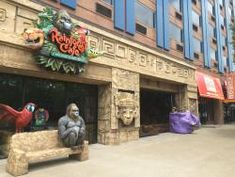 """Looking for a great place to bring the family? Look no further then """"The Rainforest Cafe"""". With an excellent menu, with a great variety of food to suit even the pickiest of eaters, this spot will ensure you and your loved ones are well fed and entertained.  #niagarafalls #niagarafallsus #niagarafallsny #restaurants #niagarafallsrestaurants #restaurants #restuarantsny #tripadvisor #foodblog #food #potd Delicious Restaurant, Menu Restaurant, Niagara Falls Restaurants, Casino Buffet, Prime Steakhouse, Niagara Falls New York, New York State Parks, Rainforest Cafe, Autumn In New York"""