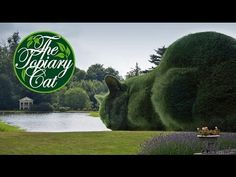 YouTube video of Richard Saunders, Surrealist, explaining how The Topiary Cat Project started and how it turned from a single surrealist image to a worldwide phenomenon.