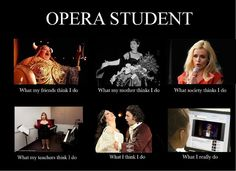 I don't study opera but this is funny!