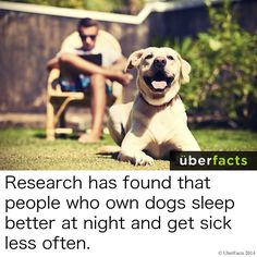 uberfacts sleep