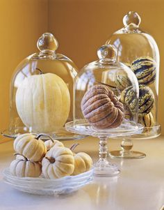 Country Living shows us how simple it is to create some elegant beauty. Place some pretty pumpkin and gourds under a beautiful cloche dome and you have instant Fall Decor! Ah…the magic of the cloche.