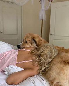 Golden Retriever, Retriever Dog, My Vibe, Jolie Photo, Looks Cool, Dog Grooming, Grooming Shop, Dog Toys, Puppy Love