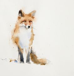 Fox Painting, Painting & Drawing, Turner Painting, Watercolor Sketch, Watercolor Paintings, Fox Watercolour, Animal Paintings, Animal Drawings, Fox Drawing