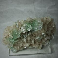 """Apophyllite """" bow tie """" Rahuri Maharashtra India Bows, India, Pakistan, China, Australia, Minerals, Africa, Arches, Goa India"""