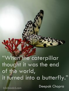 When the caterpillar thought it was the end of the world, it turned into a butterfly. Deepak Chopra