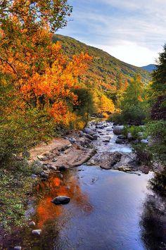 Autumn, Sequoia National Park, CA