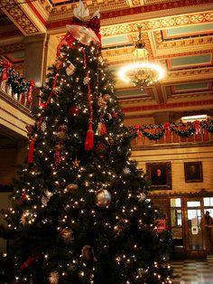 Ashville Courthouse Christmas tree. North Carolina...