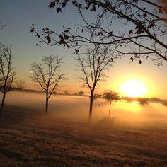 Regreso a las clases, un día encantador!!! Nordelta, Bs. As., Argentina.
