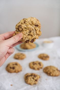 Lactation Cookies (Chocolate Chip Oatmeal Cookies) Oatmeal Chocolate Chip Cookies, Dark Chocolate Chips, Cookie Flavors, Lactation Cookies, Cookies Ingredients, How Sweet Eats, Different Recipes, A Food, Yummy Food