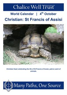 Christian feast celebrating the life of St Francis of Assisi, patron saint of animals. World Calendar, Calendar 2014, Francis Of Assisi, St Francis, Glastonbury Tor, Patron Saint Of Animals, Patron Saints, Community Events, The Life
