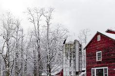 Rikki Snyder Photography | Blog | A Taste of Winter