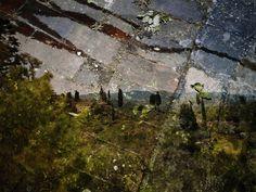 Abelardo Morell - Tent-Camera Image On Ground: View of Landscape Outside Florence, 2010