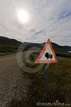 Musk Ox road sign in Greenland with a shinny and cloudy sky