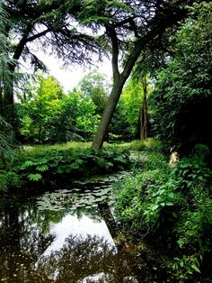 Park Schoonoord Rotterdam